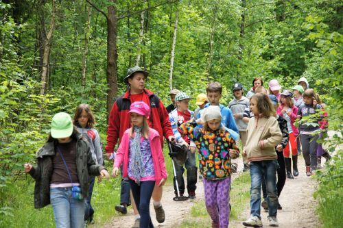 Wycieczka szkolna dzieci las
